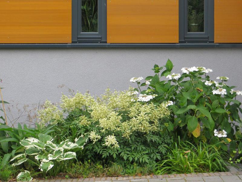 Moderner vorgarten mit steinen  Gärten von Freiformat | Gartengestaltung | Moderner Garten